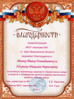 Благодарность МОУ гимназия №1 г.о. Шуя Ивановской области