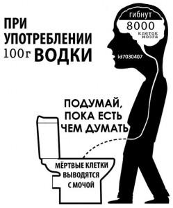 1.1алкоголь и мозг