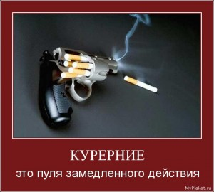 Борисов, Королев 11а