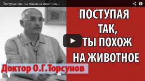 Доктор Торсунов