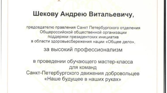 Дворец учащейся молодежи города Санкт-Петербурга выразил благодарность ОО «Общее дело»
