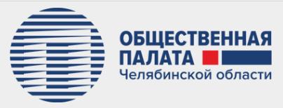 Общественная палата Челябинской области: в Южноуральске состоялся семинар-практикум по программе «Здоровая Россия — Общее дело»